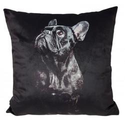 Czarna welurowa poduszka z psem Glamour
