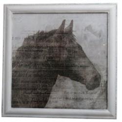 Obraz Gray Horse - 1