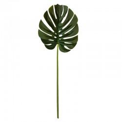 Liść dekoracyjny palmy Etno Chic