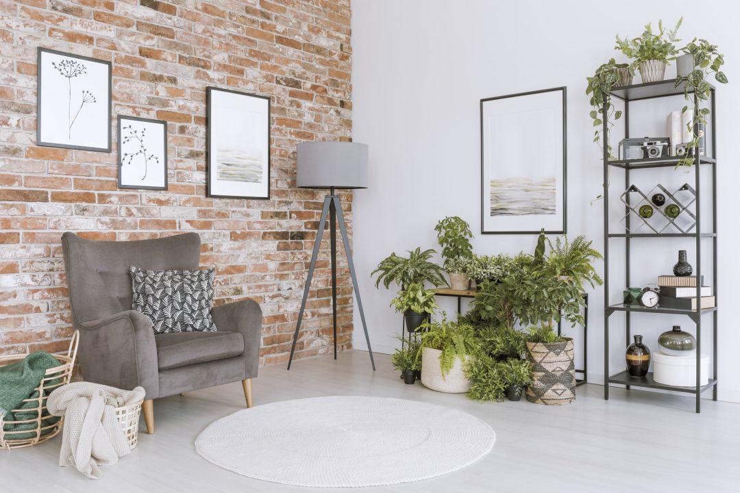 Fotele I Krzesła Tapicerowane Modne I Eleganckie Wnętrze Blog